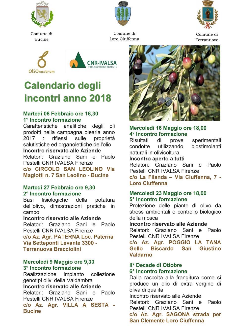Calendario Trattamenti Olivo Biologico.Coltivare La Natura La Scelta Biologica Giuggiola